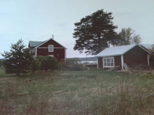 1985, med träsket i bakgrunden.
