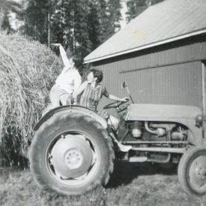 Systrarna kör in det sista höet med traditionell traktor. 21 juli 1967