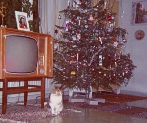 Fota vardagsförempl, som TV-apparater? Nej, här var den livliga katten huvudsaken, zoom fanns inte 1970, så Monarken fick komma med...