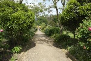 En del av den enorma parken, Governments Gardens