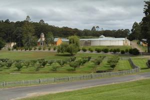 Mentalsjukhuset, panoptikon och föredömligt klippta fruktträd